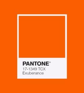 PANTONE 17-1349 Exuberance