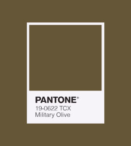 PANTONE 19-0622 Military Olive