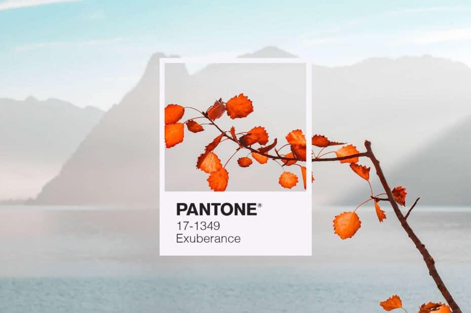 Colori Pantone autunno inverno 2020 2021